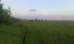 polya-vdol-oki-v-Ryazani
