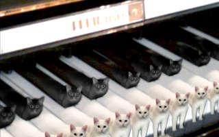 Ремонт синтезаторов Yamaha в Рязани