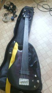 Экранировка бас-гитары в Рязани